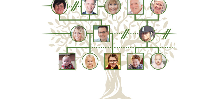 The Tangled Stepfamily Tree
