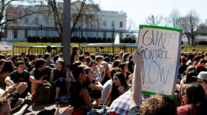 Will Gun Control Solve Our Problems?