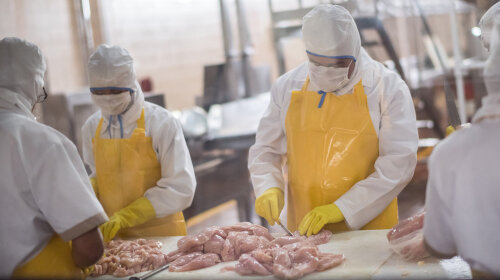 Protect Yourself From Foodborne Illness