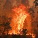 Catastrophic Fires Sweep Australia's East Coast
