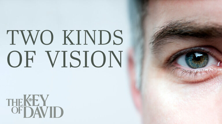 Two Kinds of Vision